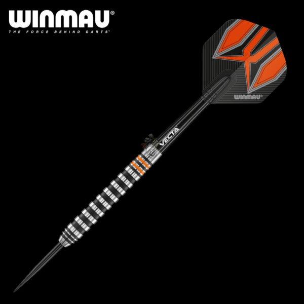 画像1: 特価 ソフトダーツ Winmau 2021 フューリー Fury (1)